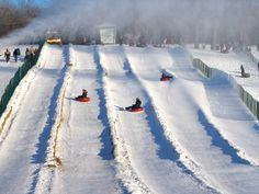 Mont-Royal - WOW, this brings back so many memories for me as a kid!!  I used to spend the whole day tobogganing down the mountain!  So much fun!!