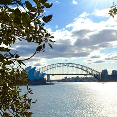 Exploring Sydney with Kids – Part 1 Kids Part, Sydney Harbour Bridge, Botanical Gardens, Family Travel, Art Gallery, Australia, Explore, Adventure, World