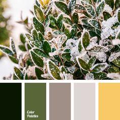 Bathroom colors brown beige bedrooms 17 ideas for 2019 White And Brown Bedroom, Bedroom Green, White Rooms, Brown Bedrooms, Bathroom Colors Brown, Beige Bathroom, Shades Of Beige, Shades Of Green, Green And Grey