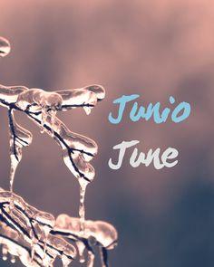 JUNIO   JUNE⠀⠀⠀⠀⠀⠀⠀⠀⠀ .⠀⠀⠀⠀⠀⠀⠀⠀⠀ Today June, 20 is the winter solstice in the south hemisphere. Today officially starts the winter in Chile and all countries in the south hemisphere.⠀⠀⠀⠀⠀⠀⠀⠀⠀ .⠀⠀⠀⠀⠀⠀⠀⠀⠀ I love winter. Do you like winter?⠀⠀⠀⠀⠀⠀⠀⠀⠀ .⠀⠀⠀⠀⠀⠀⠀⠀⠀ Hoy 20 de junior es el solsticio de invierno en el hemisferio sur. Hoy empieza oficialmente el invierno en Chile y en todos los paises en el hemisferio sur. ⠀⠀⠀⠀⠀⠀⠀⠀⠀ .⠀⠀⠀⠀⠀⠀⠀⠀⠀ A mi me encanta el invierno. ¿A ti te gusta el…