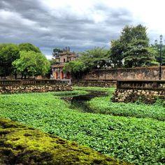 The lush moat surrounding the Citadel, Hue, Vietnam.