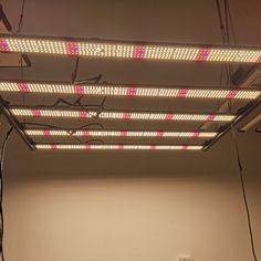 FULL SPECTRUM GROW LIGHT - 600W Samsung LM561C LED grow light with 2450 LEDs to provide a full spectrum of LM561C (3000K+4000K ) +660nm+740nm + 395nm;600W Samsung LM301B LED grow light with 2270 LEDs to provide a full spectrum of LM301B (3000K+5000K ) +660nm+740nm + 395nm; 0-10V dimmable, the combination of white , red LEDs and UV leds result in a relatively high ratio of blue light , which can achieve a better results consistent with the actual photobiota from seeds to flowers Led Grow Lights, Daisy Chain, Hydroponics, Indoor Plants, Spectrum, Just In Case, Seeds, Bloom, Samsung