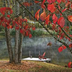 Best New Cottage: Red Chair by Lake < Best New Cottage: 2009 Southern Home Awards - Southern Living