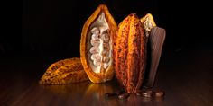 Cocoa Pod and Cocoa Beans along with a little Purist chocolate bar #hotelchocolat #chocolate #cocoa
