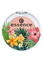 Essence - *Exit to Explore* - Eyeshadow - 03: Apricot cockatoo