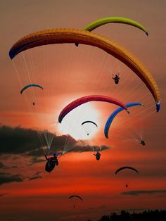 paraglider wallpapers, http://wallpapers.ae/paraglider-wallpapers.html - curves are more pleasing to the eyes