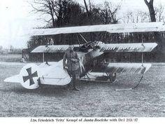 Fokker Dr.I 213/17 at Jasta 2.