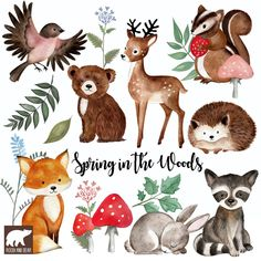 Hand-made watercolor clip art di RoodiandBear Clipart, Planner Stickers, Flower Doodles, Elements Of Art, Woodland Animals, Woodland Animal Nursery, Chipmunks, Oeuvre D'art, Pet Birds