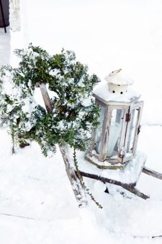 .winter white and evergreen