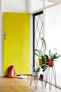Colorful Doors - ROO