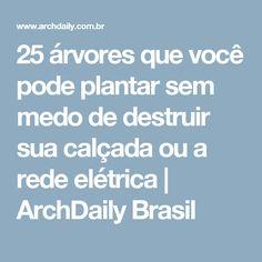 25 árvores que você pode plantar sem medo de destruir sua calçada ou a rede elétrica | ArchDaily Brasil