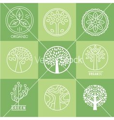 Collection Of Design Elements by Top_Vectors on GraphicRiver. Editable EPS and Render in JPG format Leaves Vector, Organic Plants, Vector Art, Design Elements, Plant Leaves, Eco Friendly, Graphic Design, Abstract, Illustration