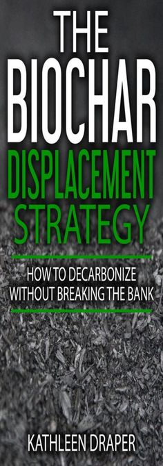 The Biochar Displacement Strategy