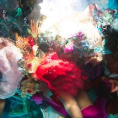 """""""My Time With Protea"""" by Christy Lee Rogers Archival Giclée Pigment Print with Glossy Acrylic Diasec Face Mounting 147 x 196.5cm Signed: """"Christy Lee Rogers"""" (Verso) Dated: 2017 Edition 1/3 Baroque Painting, Hi Fructose, Contemporary Photography, Contemporary Art, No Time For Me, Home Art, Shake, Magazine, Texture"""