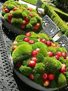 Gardening Autumn - Autumn - This I can make for our table in the yard. We have about the same pots. Planning a trip to the garden center - With the arrival of rains and falling temperatures autumn is a perfect opportunity to make new plantations Deco Nature, Deco Floral, Plantation, Winter Garden, Spring Garden, Topiary, Ikebana, Christmas Inspiration, Garden Planning