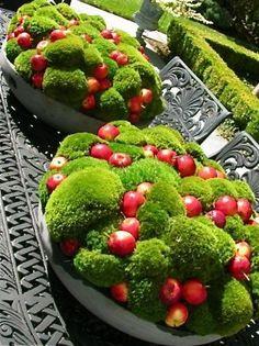 Gartendekoration mit Moos und Zieräpfeln