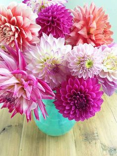 Dahlias in Aqua Vase.