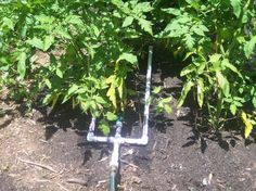 PVC Drip irrigation for your garden. We are doing this system this year. Will keep the weeds down.