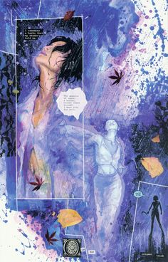David Mack's Kabuki comic series. It's been years since I've read these stunning mixed media creations! Gotta go back...
