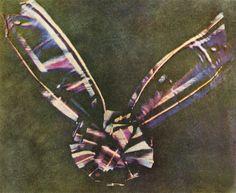 A primeira fotografia colorida A primeira fotografia colorida foi feita pelo físico matemático James Clerk Maxwell. O inventor do SLR, Thomas Sutton, foi o homem que apertou o botão do obturador, mas Maxwell é creditado como autor do processo científico que fez isso ser possível. Para aqueles que têm problemas para identificar a imagem, é um arco de três cores.