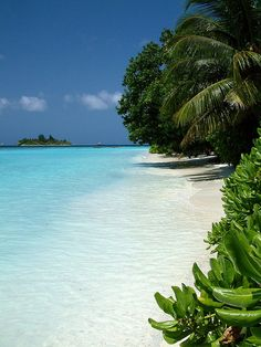 Maldives, Indian Ocean ~by jogrman on flickr