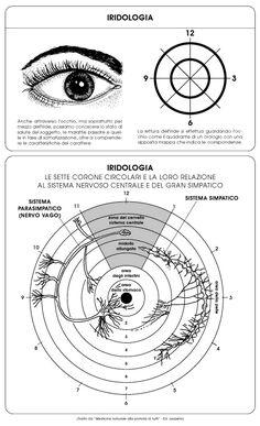 Iridologia, tecnica diagnostica attraverso l'iride degli occhi