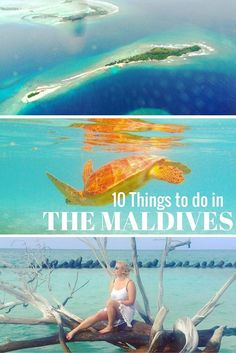 10 Things to do in the Maldives | Travel Maldives | Maldives Travel Guide | Luxury Resorts Maldives | Maldives Honeymoon | Backpacking Maldives | Maldives On A Budget | Maldives Highlights | Maldives Budget Travel | Maldives Hikes | Maldives Top Attractions | Maldives Hiking | Top Things To Do In Maldives | Top Islands In Maldives | Top Sights Maldives | Maldives Diving | Best Beaches Maldives  The Maldives | Maldives Travel | Maldives Honeymoon | Maldives