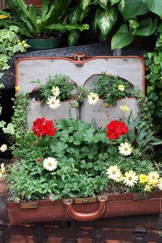Flowers in vintage suitcases