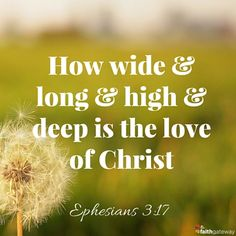I pray that you, being rooted and established in love, may have power… to grasp how wide and long and high and deep is the love of Christ… that you may be filled to the measure of all the fullness of God.   — Ephesians 3:17-19