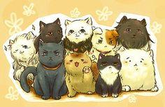 Hetalia-Cat!France,Germany,China,Italy,America,Russia,England,Japan