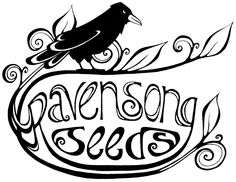 Ravensong Seeds - medicinal & culinary herbs, garlic, flowers, & vegetables