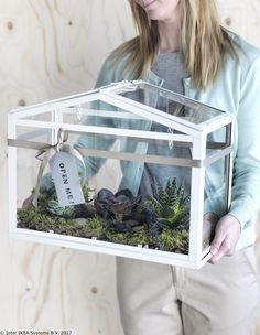 A woman wearing an IKEA SOCKER greenhouse in white, filled with moss and suede . A woman is wearing an IKEA SOCKER greenhouse in white, filled with moss and succulents. Simple Greenhouse, Indoor Greenhouse, Miniature Greenhouse, Air Plants, Indoor Plants, Ikea Socker, Mini Serre, Homemade Modern, Plants Are Friends