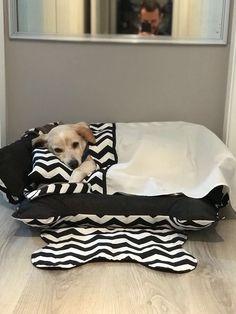 children and pets Dog Room Decor, Pet Dogs, Dog Cat, Pet Corner, Diy Dog Bed, Dog Furniture, Dog Rooms, Dog Store, Pet Fashion