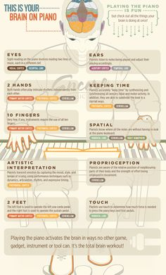 nervous system anatomy infographic - بحث Google‏