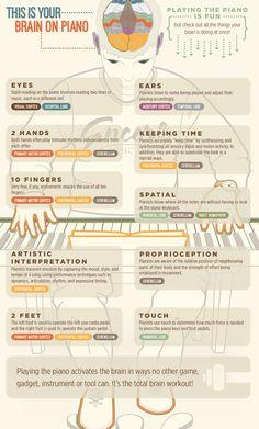nervous system anatomy infographic - بحث Google