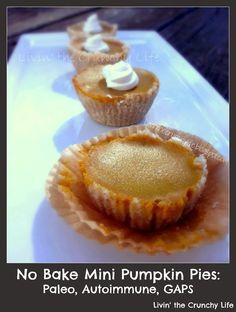 Mini No Bake Pumpkin Pies with Coconut Whipped Cream (Paleo, Autoimmune, GAPS) paleo dessert stevia Paleo Sweets, Paleo Dessert, Gluten Free Desserts, Dessert Recipes, Healthy Desserts, Healthy Recipes, Mini Pumpkin Pies, No Bake Pumpkin Pie, Baked Pumpkin