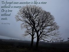 To forget ones ancestors, is like a river without a source. Or a tree without roots.  Genealogy quote