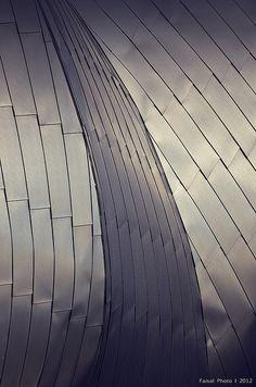 Jay Pritzker Pavilion @ Millenium Park, Chicago