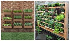 Ótima opção para pequenos espaços, os jardins verticais trazem estilo a qualquer lugar. Saiba como construir um, não é tão caro quanto parece.