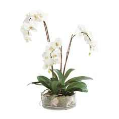 An elegant orchid bows with the weight of its profuse blooms. Vertical bamboo stakes make this arrangement look lifelike. A clear glass bowl reveals the orchid's natural habitat of moss and rocks. Silk Orchids, Phalaenopsis Orchid, White Orchids, White Flowers, Orchid Plants, Orchid Centerpieces, Orchid Arrangements, Floral Arrangement, Vases