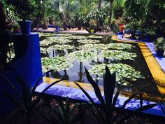 Jardin Majorelle (Marrakech, Morocco): Top Tips Before You Go - TripAdvisor