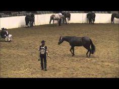 One Good Margarita - 2012 All American Quarter Horse Congress