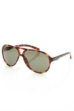 Taylor Sunglasses In Warm Tortoise