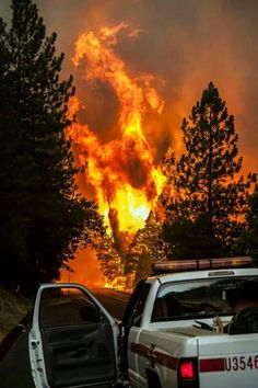 Rim Fire by Yosemite in California  Photo courtesy of CAL FIRE