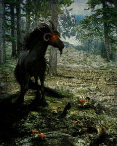 The púca (Irish for spirit/ghost) is primarily a creature of Irish folklore. Considered to be bringers both of good and bad fortune, they could either help or hinder rural and marine communities. The creatures were said to be shape changers which could take the appearance of black horses, goats and rabbits #folklore