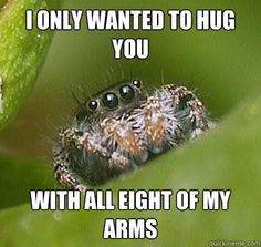 Image result for jumping spider meme