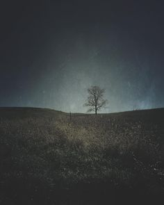 All alone... by 521gemini