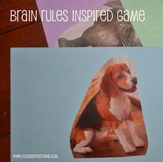 Brain Rules Inspired Game - working on executive function