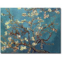 """""""Almond Blossoms"""" by Vincent Van Gogh Painting Print on Canvas Reviews ❤ liked on Polyvore featuring home, home decor, wall art, canvas paintings, flower paintings, canvas wall art, blossom wall art and flower canvas painting"""