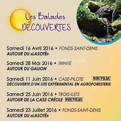 Balade découverte  Autour du «Lazoté» Vous aussi intégrez vos événements dans l'Agenda des Sorties de www.bellemartinique.com C'est GRATUIT !  #martinique #Antilles #domtom #outremer #concert #agenda #sortie #soiree